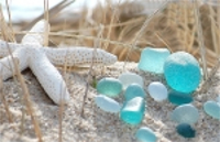 Closeup of sea glass and sea star in beachgrass on sunny day